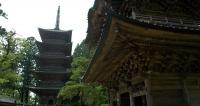 善寶寺-山門と五重塔