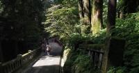 榛名神社-参道