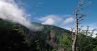 飛騨口から継子岳へTOP