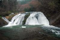 釜淵の滝110501