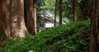 ■慈光寺ギャラリー・トップ