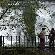 滝を眺める人