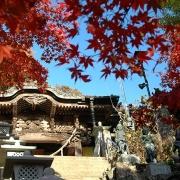 鮮やかな秋色に染まった大山寺に参る―2007紅葉の丹沢・大山 その一