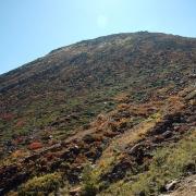 登山道から03