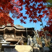 鮮やかな秋色に染まった大山寺に参る―2007紅葉の丹沢・大山 その一